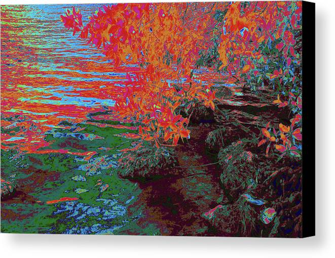 Ponds Canvas Print featuring the photograph A Quiet Place 5 by Gary Bartoloni