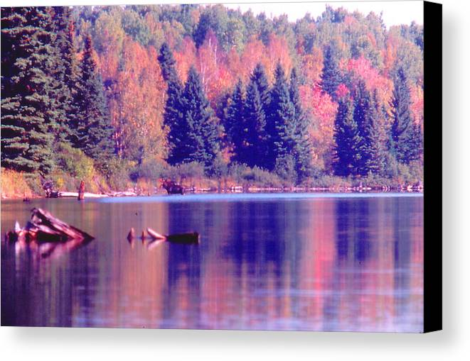 Algonquin Park Canvas Print featuring the photograph Algonquin Autumn by Ron Swonger