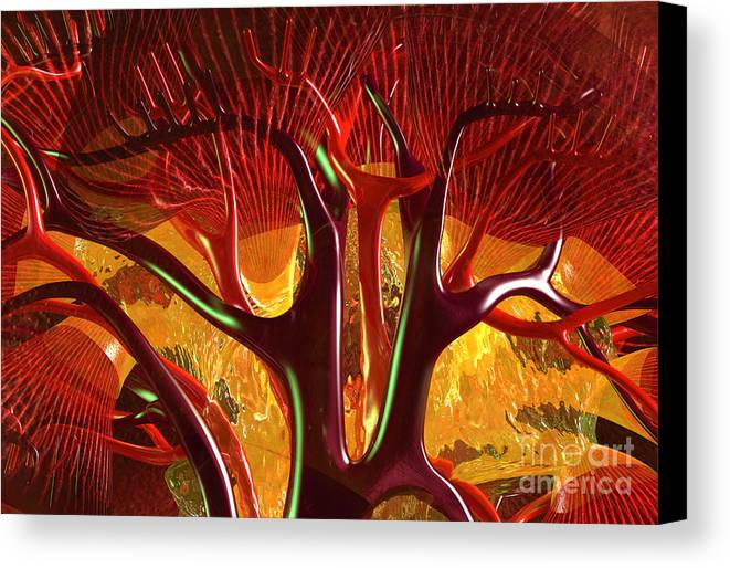 Anatomy Abstract 1 Kidney Canvas Print Canvas Art By Russell Kightley