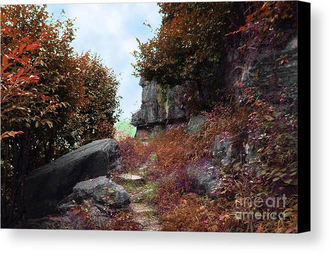 Landscape Canvas Print featuring the photograph Ancient Pathway by Dot Xie