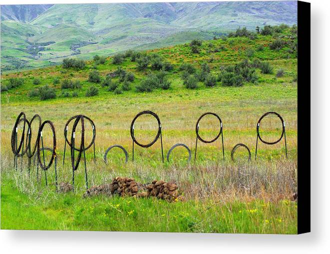 Art On The Ranch Canvas Print featuring the photograph Art Or Practicality by Jenny May