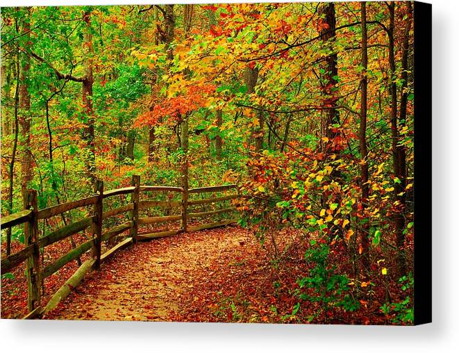 Autumn Landscapes Canvas Print featuring the photograph Autumn Bend - Allaire State Park by Angie Tirado
