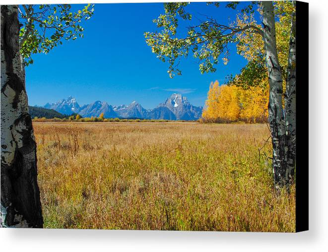 Tetons Canvas Print featuring the photograph Autumn In The Tetons by Megan Martens