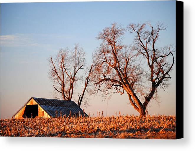 Barn Canvas Print featuring the photograph Barn At Sunrise by Glory Ann Penington