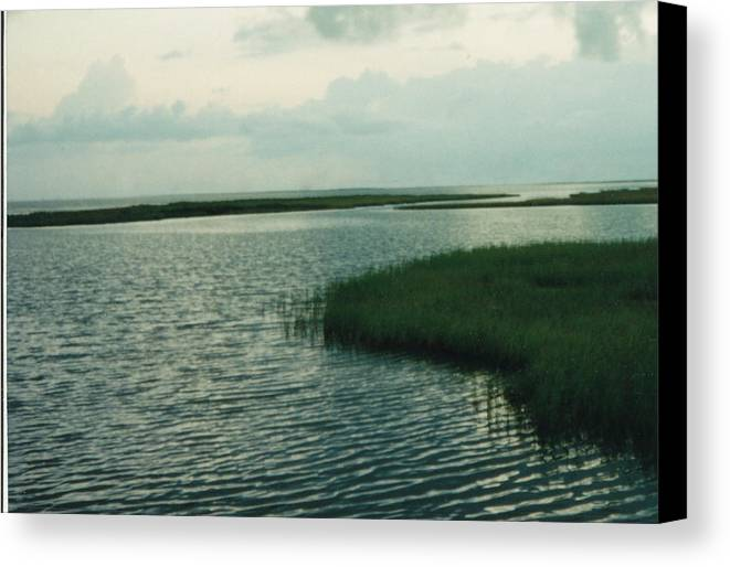 Bay Canvas Print featuring the photograph Bay And Marsh 1 by Cindy New
