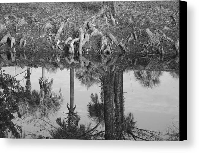 Roots Canvas Print featuring the photograph Black And White Water Reflections by Rob Hans