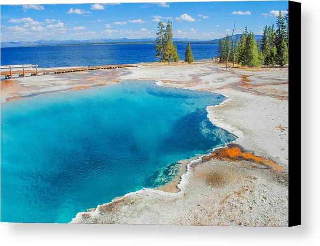 Yellowstone Canvas Print featuring the photograph Black Pool by Megan Martens