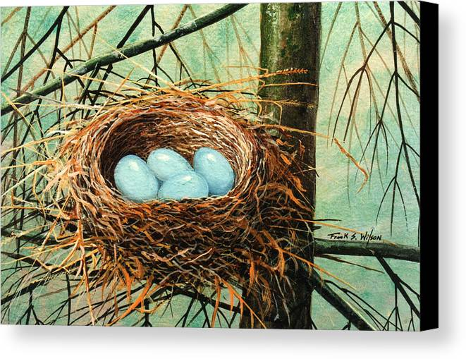 Wildlife Canvas Print featuring the painting Blue Eggs In Nest by Frank Wilson