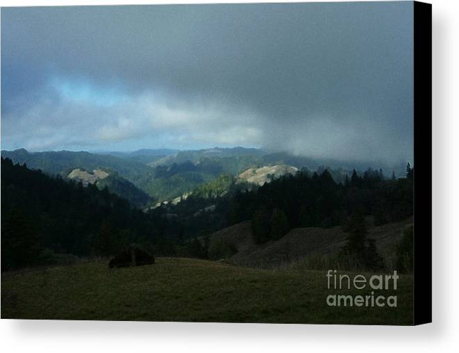 View Canvas Print featuring the photograph Break In The Storm by JoAnn SkyWatcher