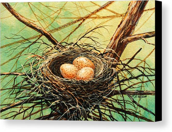 Wildlife Canvas Print featuring the painting Brown Speckled Eggs by Frank Wilson