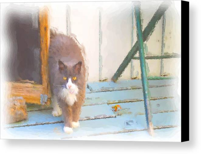 A Grand Pussy Cat Welcome To My Home Canvas Print featuring the digital art Bryant Pond Cat by Jonathan Galente