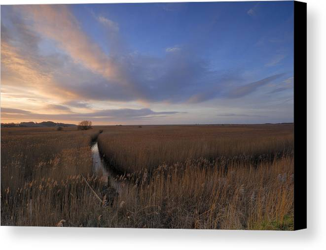 England Canvas Print featuring the photograph Cley Marshes by Liz Pinchen