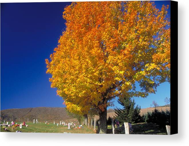 Yellow Leaves Canvas Print featuring the photograph Country Cemetary by Carl Purcell