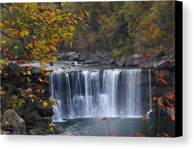 Landscape Canvas Print featuring the photograph Cumberland Falls In Gold by Bj Hodges