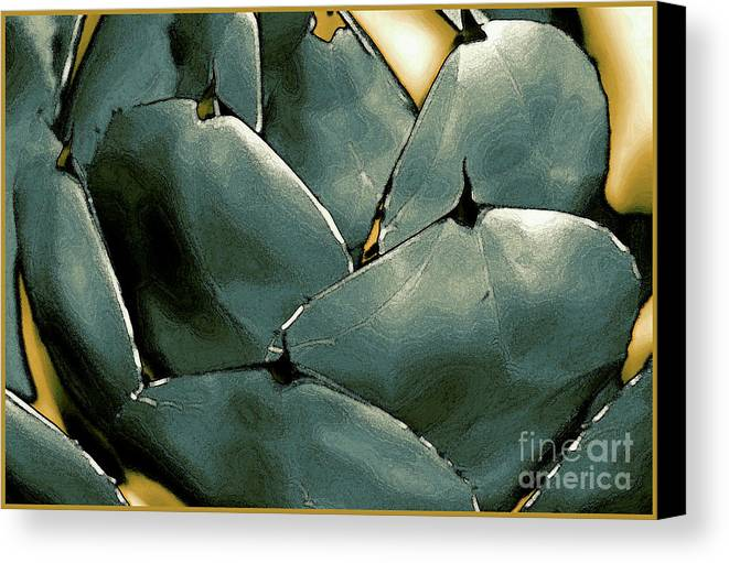 Abstract Canvas Print featuring the photograph Desert Botanical 2 by Linda Parker