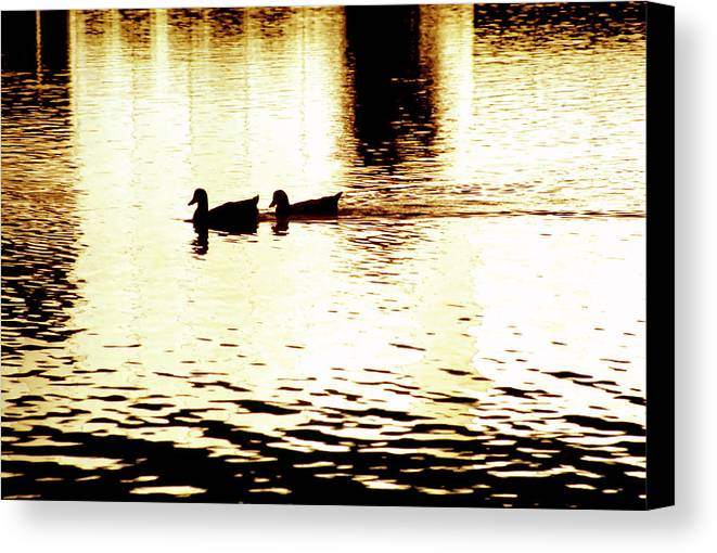 Silhouettes Canvas Print featuring the photograph Ducks On Pond 1 by Steve Ohlsen