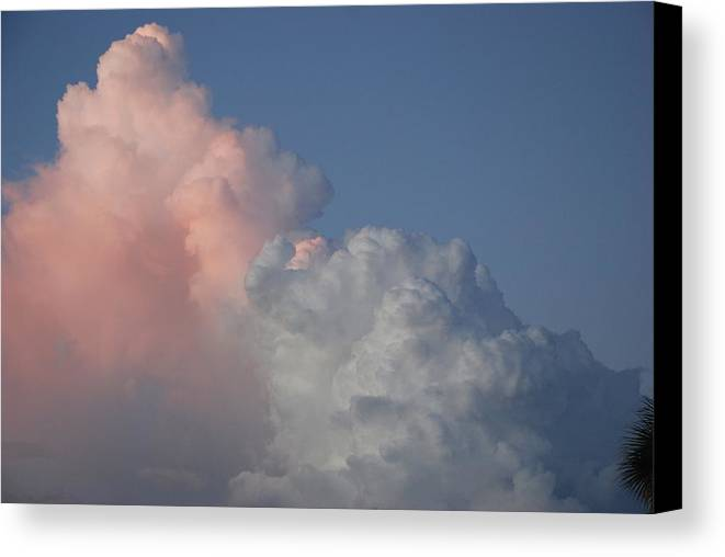 Clouds Canvas Print featuring the photograph Elephant Cloud by Rob Hans