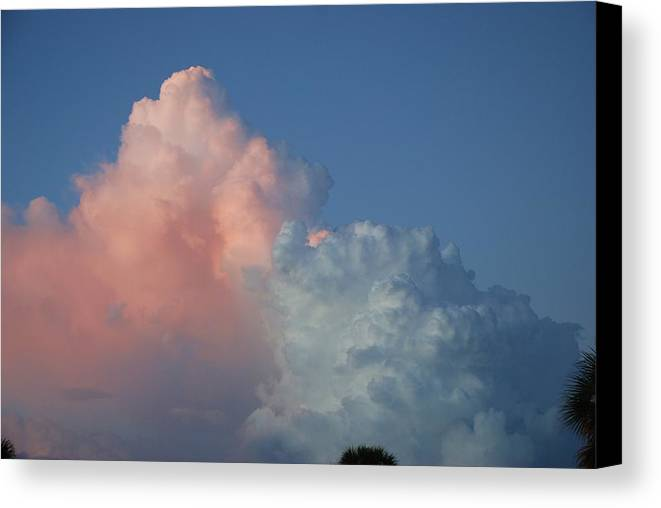 Clouds Canvas Print featuring the photograph Elephants Clouds by Rob Hans