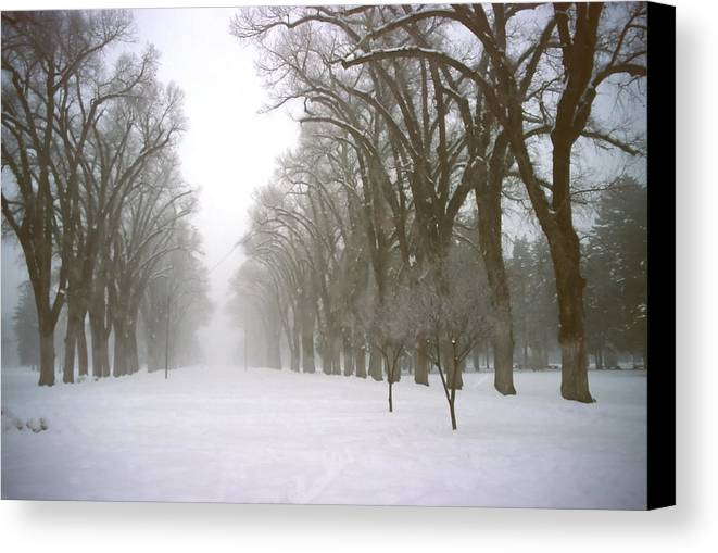 Nature Canvas Print featuring the photograph Foggy Morning Landscape 4 by Steve Ohlsen