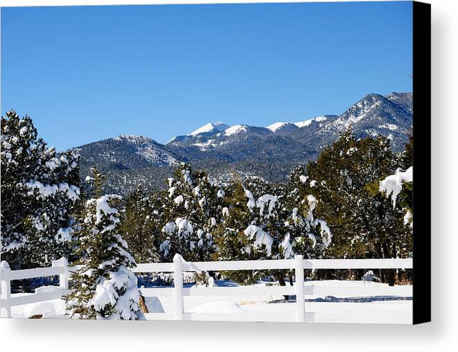 Fence Canvas Print featuring the photograph Fresh Coating by Jon Rossiter
