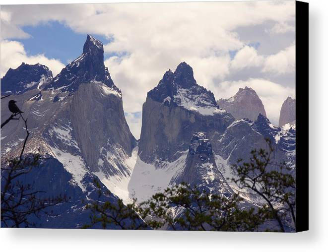 Gray Glacier Canvas Print featuring the photograph Gray Glacier Chile by Charles Ridgway