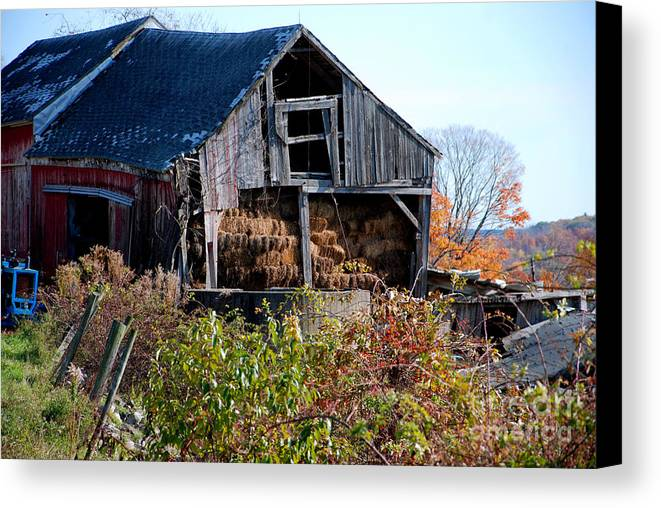 Litchfield County Canvas Print featuring the photograph Hay by Andrea Simon
