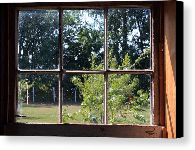 Old Canvas Print featuring the photograph Old Pitted Glass Window by Joanne Coyle