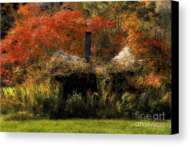 House Canvas Print featuring the photograph Ouch by Lois Bryan