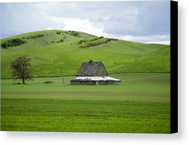 Palouse Canvas Print featuring the photograph Palouse Old Barn by Louise Magno