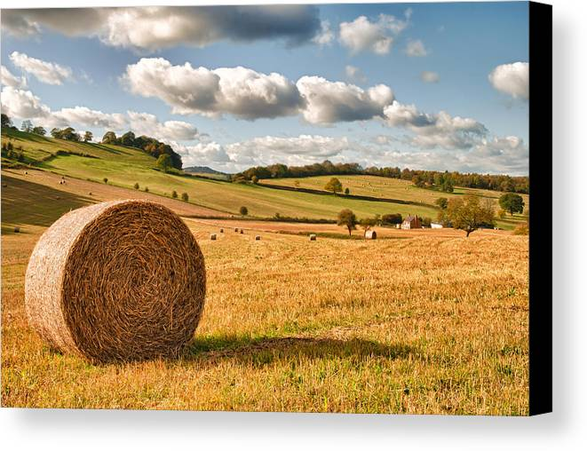 Straw Canvas Print featuring the photograph Perfect Harvest Landscape by Amanda Elwell