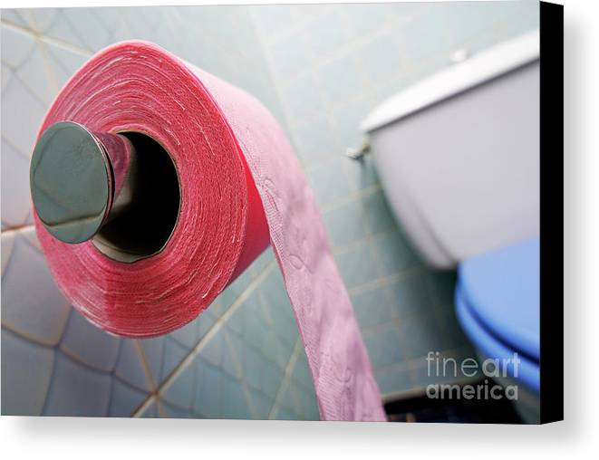 Horizontal Canvas Print featuring the photograph Pink Toilet Roll On Holder In Bathroom by Sami Sarkis