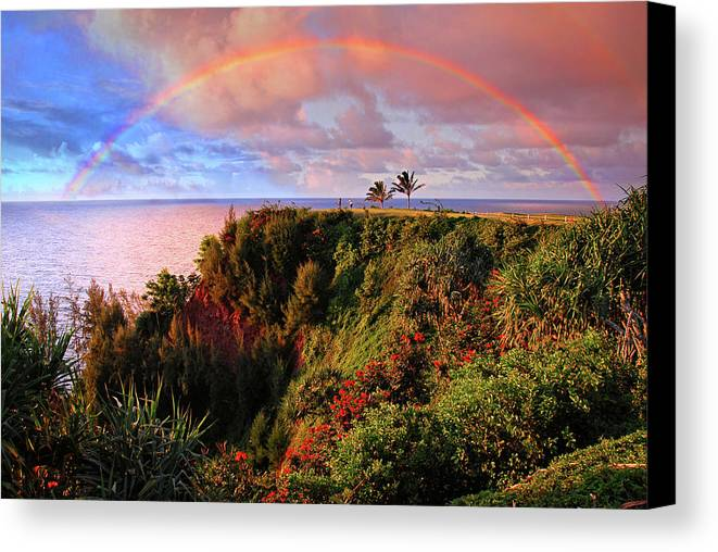 Rainbow Canvas Print featuring the photograph Play Time In Paradise by Lynn Bauer
