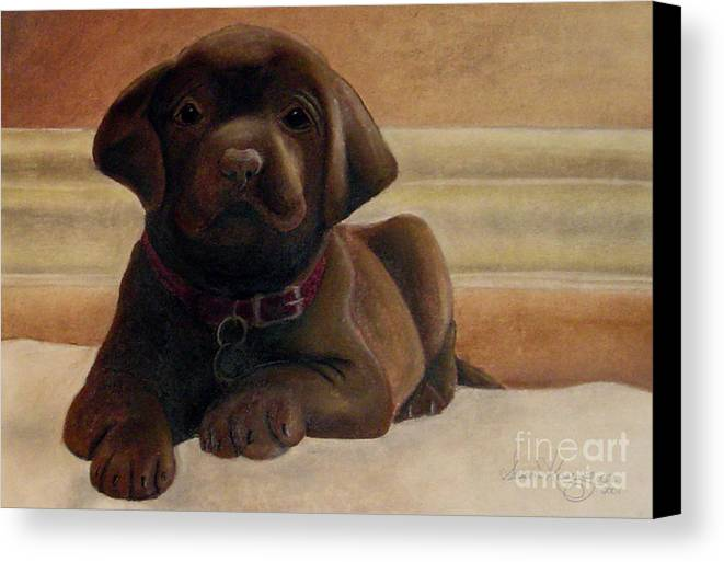 Puppy Canvas Print featuring the drawing Puppy Love by Susan Clausen