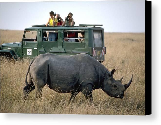 Rhinocerous Canvas Print featuring the photograph Rhino Inn Tanzania by Carl Purcell