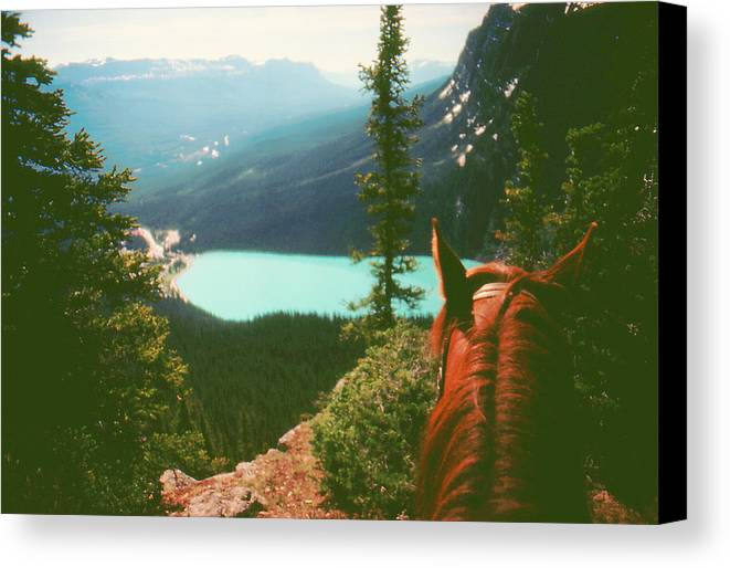 Horseback Canvas Print featuring the photograph Rim-riding O'er The Canadian Rockies by Ron Swonger