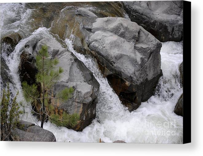Waterfall Canvas Print featuring the photograph Rio Bonito Falls by Jon Rossiter