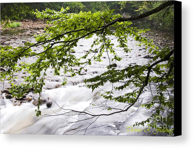 West Virginia Canvas Print featuring the photograph Rushing River by Thomas R Fletcher