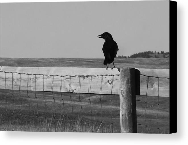 South Dakota Canvas Print featuring the photograph Sentinel by Harold Clayberg