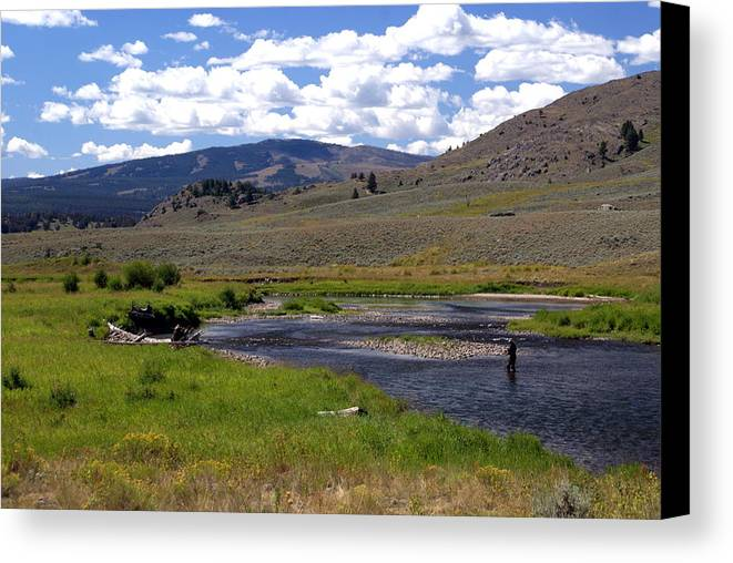 Yellowston National Park Canvas Print featuring the photograph Slough Creek Angler by Marty Koch