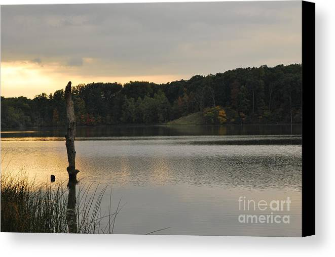 Lake Canvas Print featuring the photograph Solitude by Michelle Hastings
