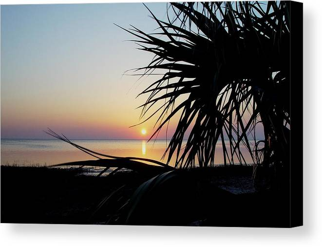 Sunset Canvas Print featuring the photograph Sun Touched by Debbie May