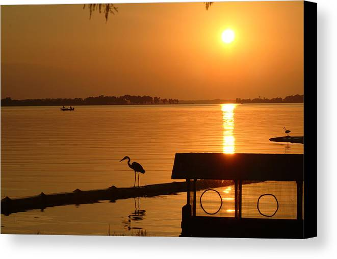 Sunset Canvas Print featuring the photograph Sunsey On Lake Dora by Charles Ridgway