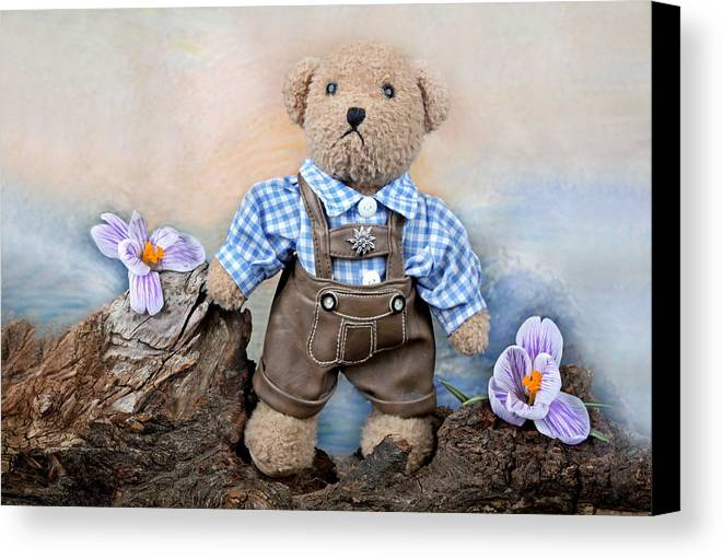Teddy Canvas Print featuring the photograph Teddy On Tour by Manfred Lutzius