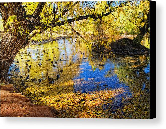 Fall Canvas Print featuring the photograph The Autumn Leaves by Tim Reaves