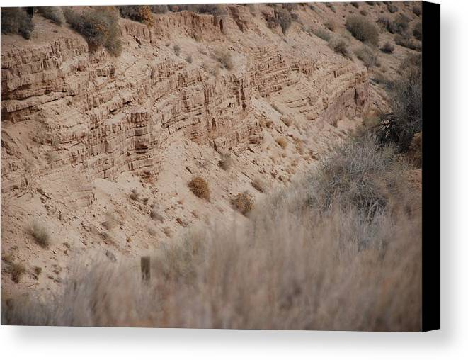 Desert Canvas Print featuring the photograph The Rocks by Rob Hans