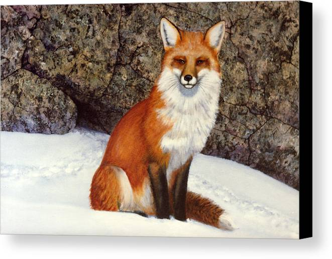 Wildlife Canvas Print featuring the painting The Wait Red Fox by Frank Wilson