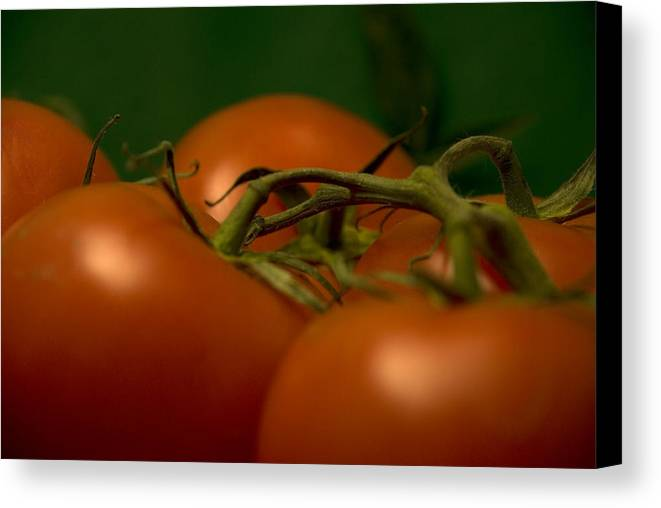 Tomatoes Canvas Print featuring the photograph Tomatoes by Jessica Wakefield