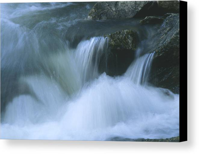 Water Canvas Print featuring the photograph Torrent by Lynard Stroud