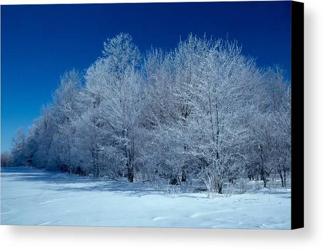Winter Canvas Print featuring the photograph Winter Scene by Raju Alagawadi