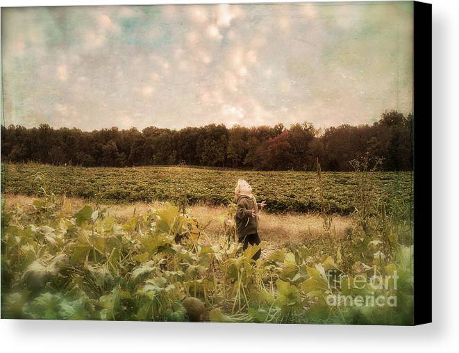 Landscape Canvas Print featuring the photograph Wonder by Lois Bryan